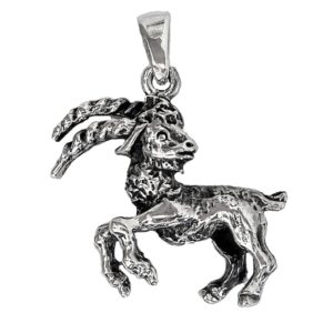 Zodiac sign Pendant Capricorn